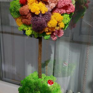 Copacel colorat